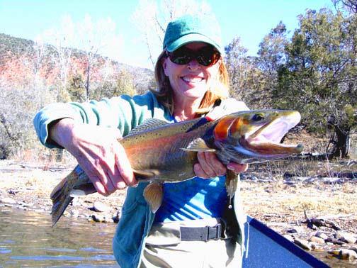 Roaring Fork River Fishing Report